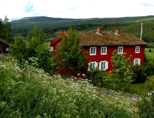 Rendalen bygdemuseum – Vesleblakkens flotte rike