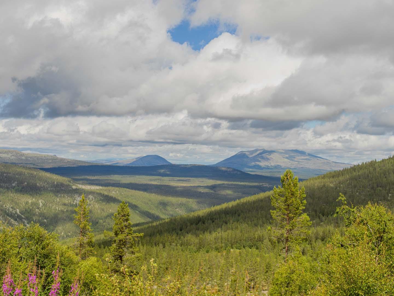 Utsikt fra Renåfjellet
